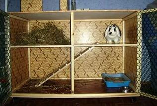 самодельные клетки для кроликов